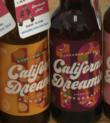 Beverage Company Markets New Mild Pot-Infused Soda
