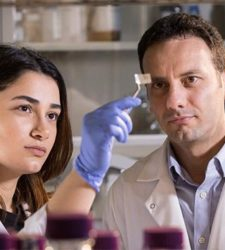 Researchers develop patch which monitors food content for harmful pathogens