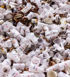Review: An Alternative To Petroleum-Based Plastic Packaging