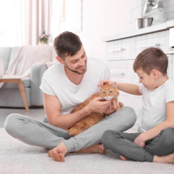 Quality ingredients driving pet care home cleaning products