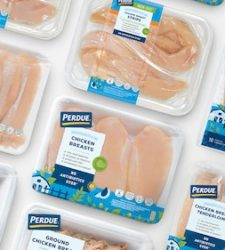 Perdue introduces millennial-friendly chicken packaging